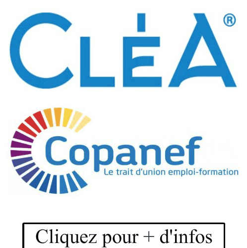 DISPOSITIF CLEA